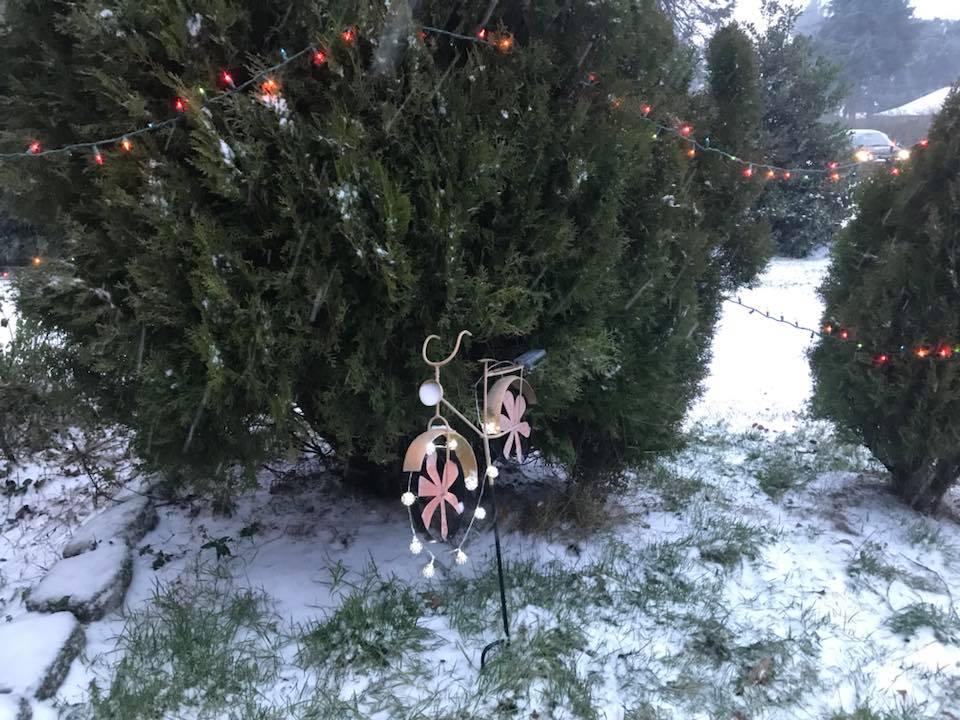 Snow in NE Portland courtesy of Kaitlin Borstelmann